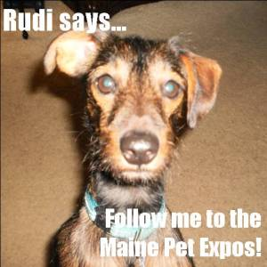 Rudi Says Follow Me...