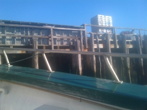 Looking up at the dock from the boat.
