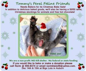 Tommy's - December 14 & 15 2013 Bake Sale